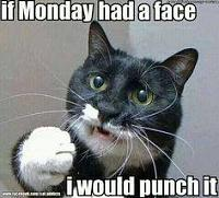 Click image for larger version.  Name:if monday had a face.jpg Views:6 Size:12.0 KB ID:10694